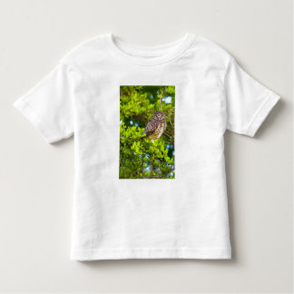 Burrowing owls are a popular site on Marco Toddler T-shirt