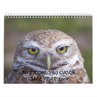 BURROWING OWLS CALENDAR 2009