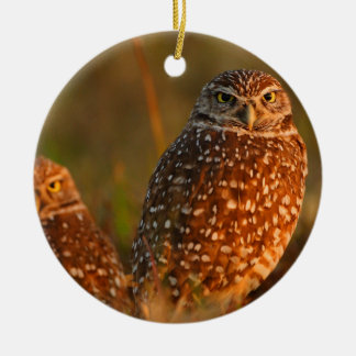 burrowing owls ceramic ornament