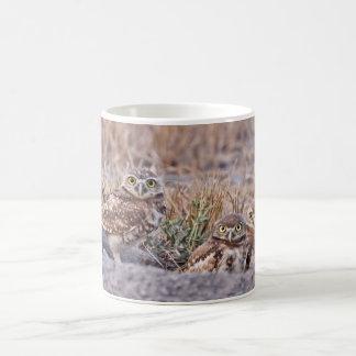 Burrowing Owls Coffee Mug