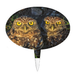 Burrowing Owls Cuddled in their Burrow Cake Topper