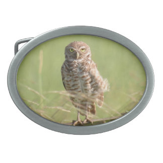 Burrowing spotted owl Belt Buckle