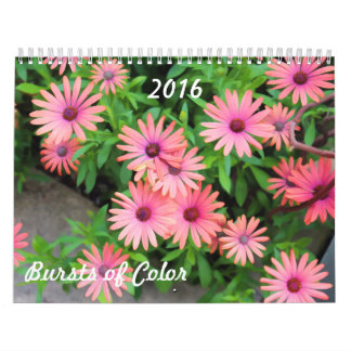 BURSTS OF COLOR 2016 CALENDAR