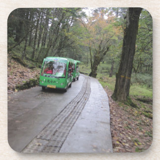 bus forest coaster