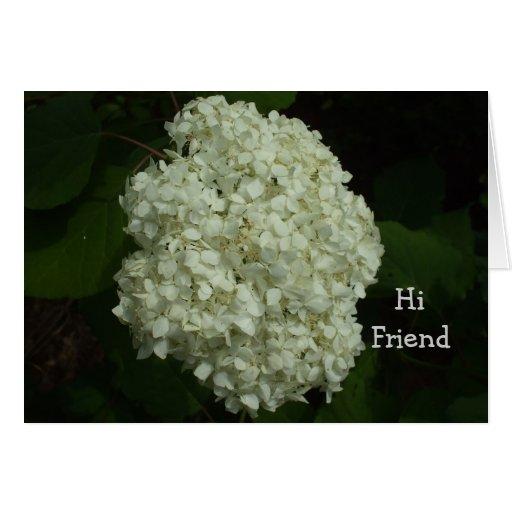 Bush-Amigos de la bola de nieve justos porque día Tarjeta De Felicitación