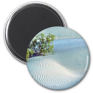 Bush And Rippled Sand, Big Dunes Refrigerator Magnets