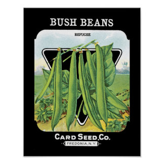 Bush Beans Seed Packet Label Poster