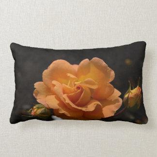 Bush color de rosa anaranjado cojines
