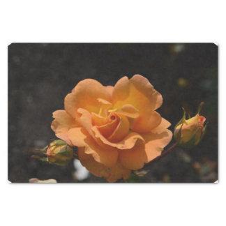 Bush color de rosa anaranjado papel de seda pequeño