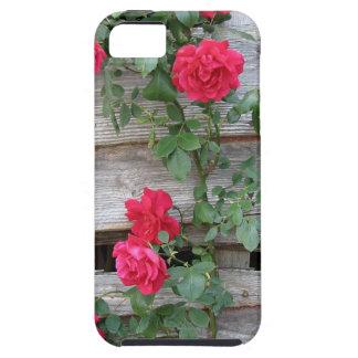 Bush color de rosa que sube iPhone 5 Case-Mate fundas