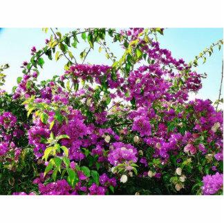 Bush con las flores púrpuras fotoescultura vertical