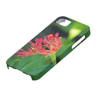 Bush coralino en la floración iPhone 5 Case-Mate cobertura
