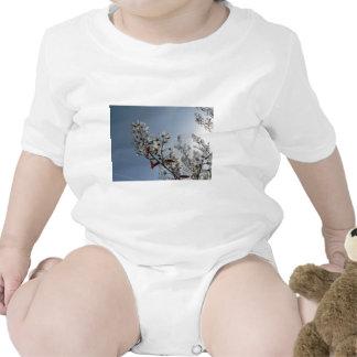 Bush floreciente blanco el Sun Trajes De Bebé