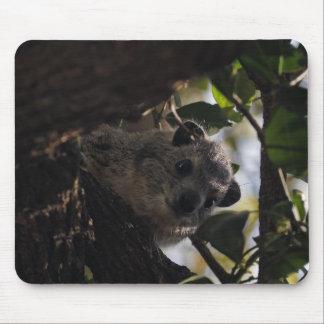 Bush Hyrax Mouse Pad