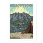 Bush Plane & Fishing - Yellowstone National Post Card