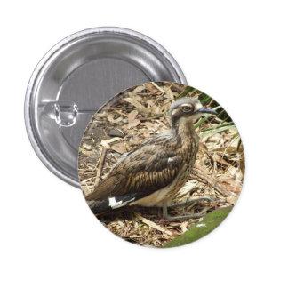 Bush Stone-curlew Badge Pinback Button