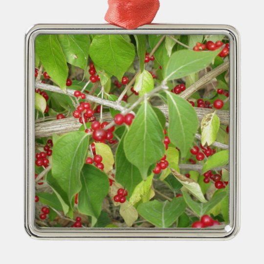 Bush with Red Berries Metal Ornament