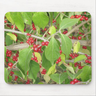 Bush with Red Berries Mouse Pad
