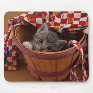 Bushel of Buster Kitty Mouse Pad