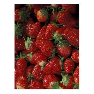 Bushel of Strawberries Postcard