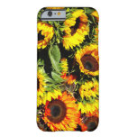 Bushel of Sunflowers iphone case Barely There iPhone 6 Case