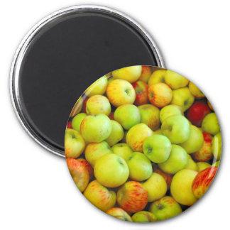 Bushels Of Apples Magnet