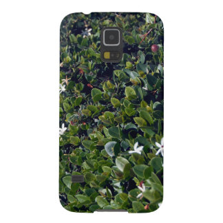 bushes galaxy s5 covers