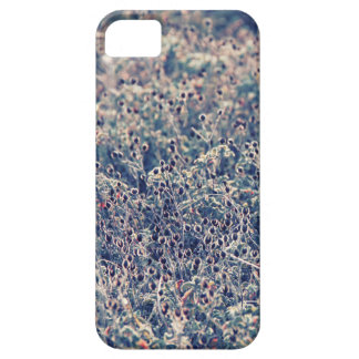 Bushes in the sunset iPhone SE/5/5s case
