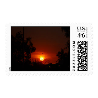 Bushfire Sunset In The Trees Stamps