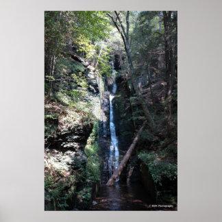 Bushkill Falls in the Poconos print 0206