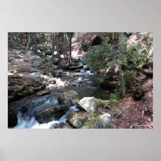 Bushkill River in the Poconos print 0086