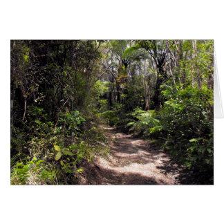 Bushwalking in New Zealand Card