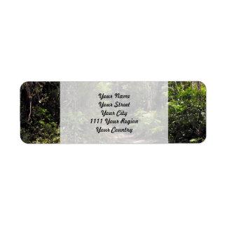 Bushwalking in New Zealand Label