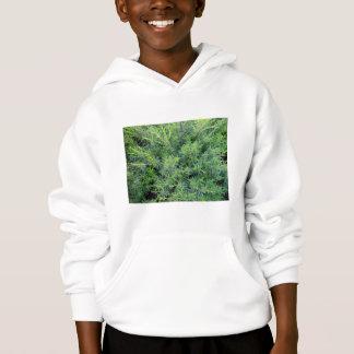 Bushy green background hoodie