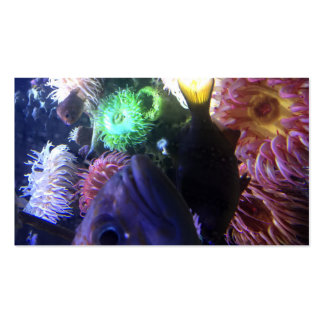 """Business, 3.5"""" x 2.0"""", 100 pack PHOTOGRAPH OF FISH Business Card"""