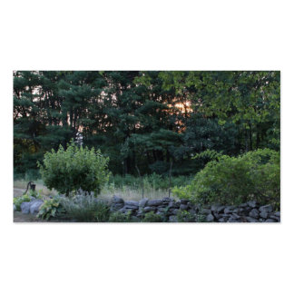 """Business, 3.5"""" x 2.0"""", 100 pack PHOTOGRAPH OF STON Business Card"""