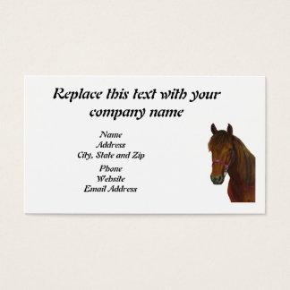Business Card, Chichi Bay Paso Fino Business Card