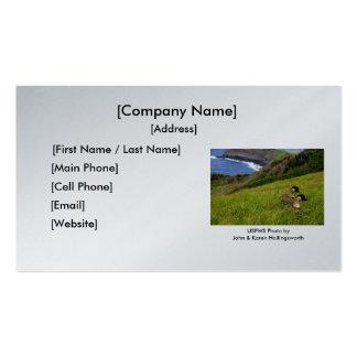 Business Card / Endangered Hawaiian Nene Geese
