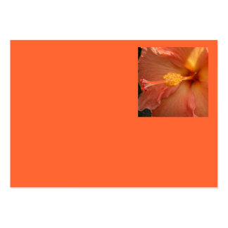 Business Card - Orange Hibiscus Flower