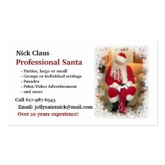 Business Card: Professional Santa Double-Sided Standard Business Cards (Pack Of 100)