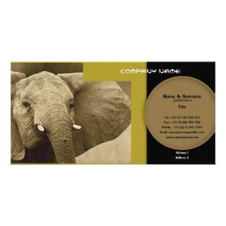 Business card profile elephant safari customizable customized photo card