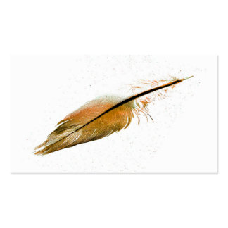 business card template feather photo art