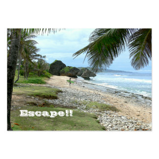 BUSINESS CARD, TRAVEL AGENTS, ISLANDS, PHOTO. LARGE BUSINESS CARD