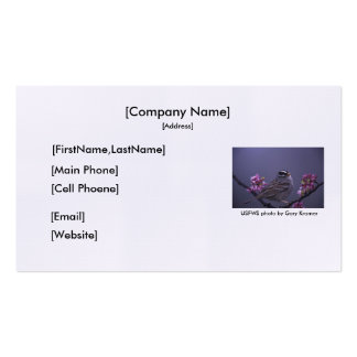 Business Card / White-crowned Sparrow