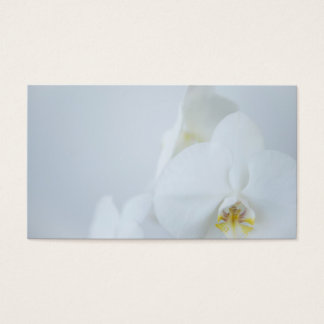 Business Card White Orchids