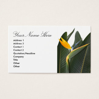 Business Card with Bird of Paradise Flower