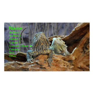 Business Card with two curious lizards