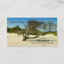 """Business Cards 3.5"""" x 2"""""""