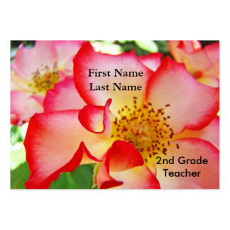 Business Cards Custom Teachers Professionals Rose