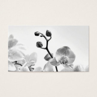 Business Cards with White Orchids